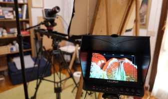 Monitor collegato alla telecamera
